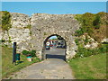 TQ6404 : Arch at Pevensey Castle by Malc McDonald
