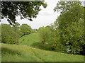 ST5865 : Near North Wick by Neil Owen