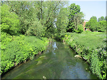 SO8483 : River Stour   Kinver by Stephen Rogerson