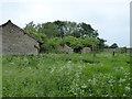 SP2401 : Tillingtons, near Langford by Vieve Forward