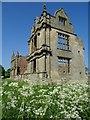 SJ5623 : Morton Corbet Castle by Philip Halling