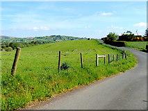 H5575 : Lane, Streefe Glebe by Kenneth  Allen