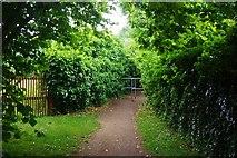 SP3103 : Public footpath from the end of Cheyne Lane, Bampton, Oxon by P L Chadwick