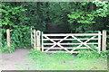 ST3399 : Northern gateway into Pentre-waun Wood by M J Roscoe