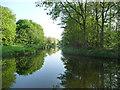 SJ9700 : Short Heath Branch, Wyrley & Essington Canal by Christine Johnstone