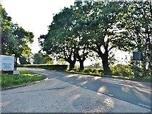 TL2252 : Drove Road, Gamlingay by David Howard