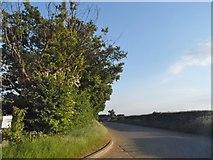 TL2150 : The Heath, Potton by David Howard