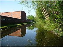 SJ9400 : The Wyrley & Essington Canal, Wednesfield by Christine Johnstone