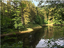SK1789 : Ladybower Reservoir at Fairholmes by David Dixon