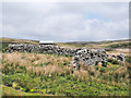 NY8805 : Sheepfold beside Stonesdale Beck by Trevor Littlewood