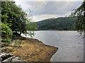 SK1790 : Derwent Reservoir Shore by David Dixon