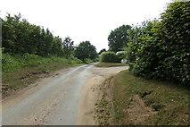 TM3875 : Grange Road, Walpole by Adrian Cable