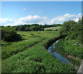 SY6681 : River Wey at Radipole by Des Blenkinsopp