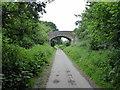 TQ5813 : Shawpits Bridge, Cuckoo Trail by PAUL FARMER