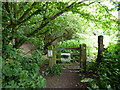 TQ5813 : Gate at Junction of Footpath and Cuckoo Trail by PAUL FARMER