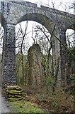 SX5160 : Riverford Viaduct by N Chadwick