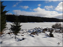 NN9147 : Frozen Loch Scoly by Andy Waddington