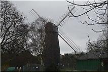 TQ3074 : Ashby's Windmill by N Chadwick