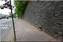 SE0724 : Stone wall on NE side of Burnley Road by Roger Templeman