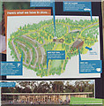 SP8808 : Poster showing the 2018 Redevelopment in Wendover Woods by Chris Reynolds