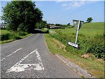 H4965 : Rarone Road, Raw by Kenneth  Allen