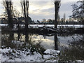SP2965 : By the River Avon on a wintry afternoon, east Warwick by Robin Stott