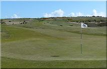 NT4681 : Green at the Gullane Golf Club by Mat Fascione