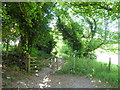 TQ5601 : Gate on Bridleway near Jevington by PAUL FARMER