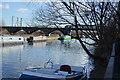 TQ3587 : River Lea by N Chadwick