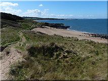 NT4884 : Sand dunes at Black Rocks by Mat Fascione