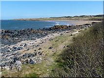 NT4884 : East Lothian coast at Black Rocks by Mat Fascione