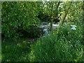SK5226 : Pond alongside the bridleway near West Leake by Alan Murray-Rust