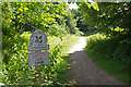 SJ8678 : The National Trust - Alderley Edge by Stephen McKay
