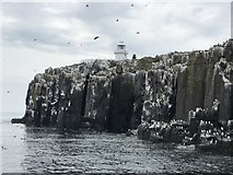 NU2135 : Inner Farne cliffs and lighthouse by Jonathan Hutchins