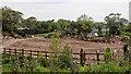 V8266 : Cleared ground by Mick Garratt