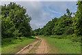 TQ0449 : Drove Road by Ian Capper