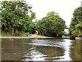 SJ9197 : Ashton Canal near Lumb Lane by Gerald England