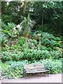 TG2208 : The Plantation Garden - seat beside the path by Evelyn Simak
