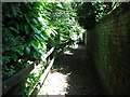 TG2208 : The Plantation Garden - path along the edge by Evelyn Simak