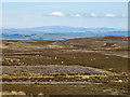 NY8755 : Burntridge Moor by Mike Quinn