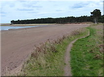 NT6378 : John Muir Way at the Hedderwick Sands by Mat Fascione