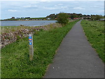 NT6578 : John Muir Way heading towards Dunbar by Mat Fascione