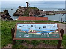 NT6779 : Information board at Dunbar Castle by Mat Fascione