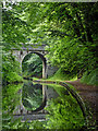 SJ8808 : Giffards Cross Bridge near Brewood in Staffordshire : Week 24