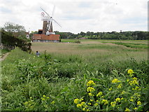 TG0444 : Marshes and windmill at Cley next the Sea, Norfolk by Richard Humphrey