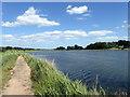 TM2647 : Footpath next to Martlesham Creek by PAUL FARMER