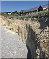 TV5595 : Eroding cliff below the café, Birling Gap by Robin Stott
