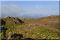 V5846 : Mountainside beside the Old Copper Road by Mick Garratt