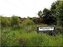 H5672 : Heathland, Mullaghslin Glebe by Kenneth  Allen