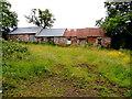 H5671 : Ruined buildings along Roeglen Road by Kenneth  Allen